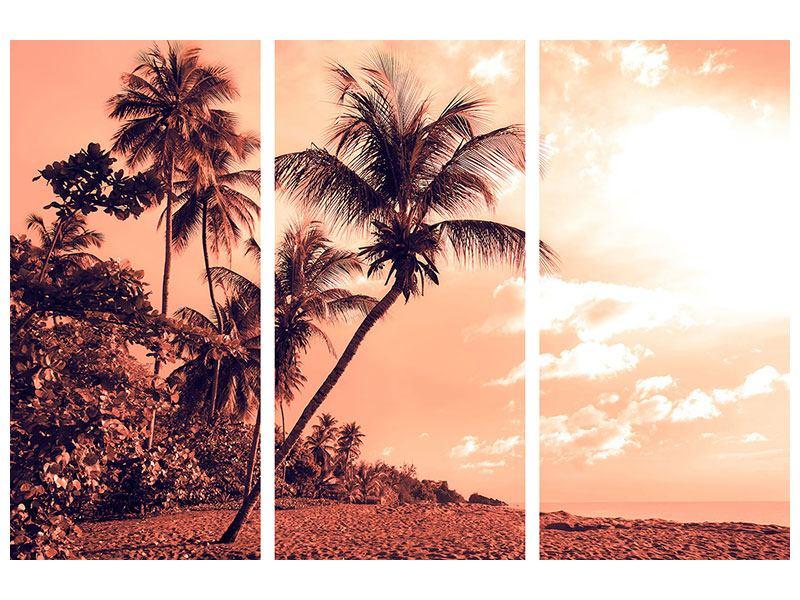 Hartschaumbild 3-teilig Tropenparadies