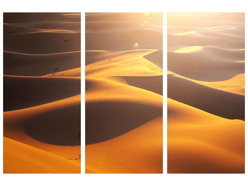 Hartschaumbild 3-teilig Wüstenwanderung