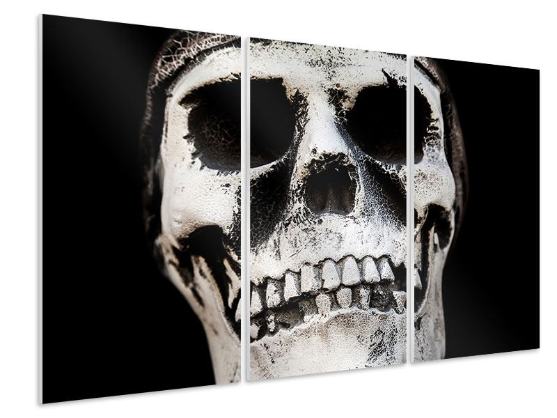 Hartschaumbild 3-teilig Skull