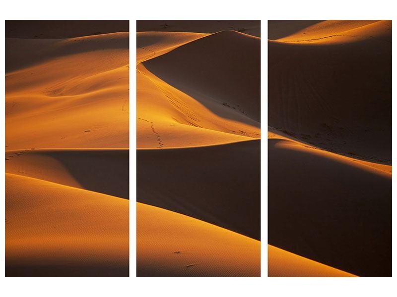 Hartschaumbild 3-teilig Wüstensand