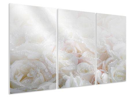 Hartschaumbild 3-teilig Weisse Rosen im Morgentau