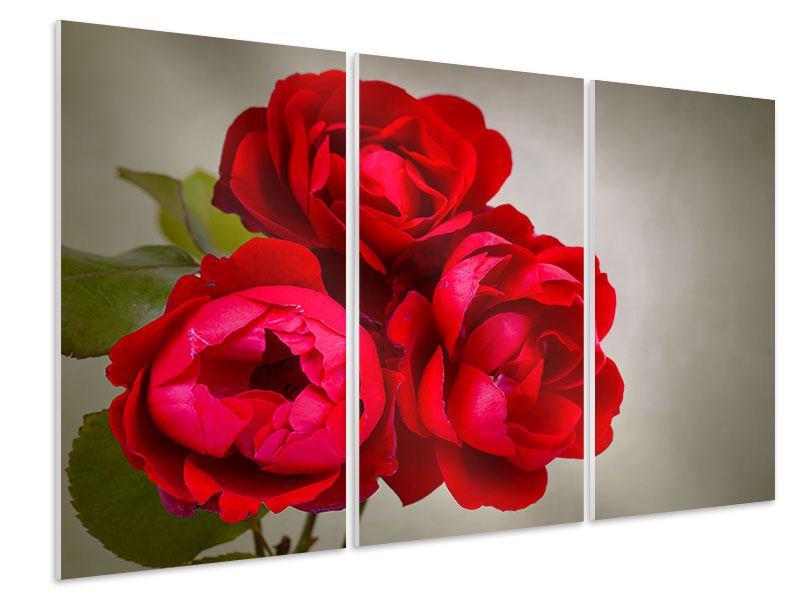 Hartschaumbild 3-teilig Drei rote Rosen
