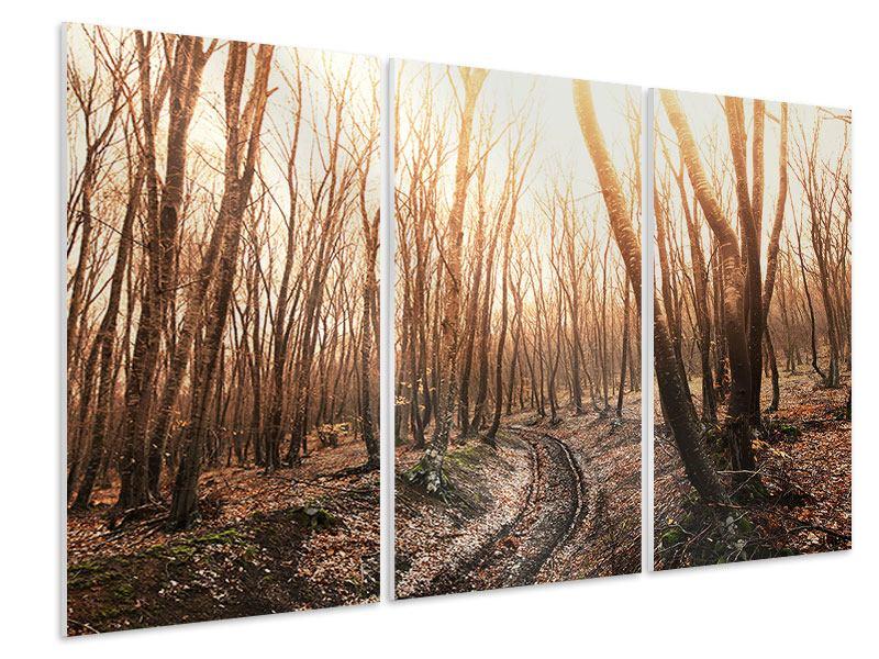 Hartschaumbild 3-teilig Der kahle Wald