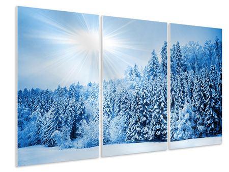 Hartschaumbild 3-teilig Wintermärchen