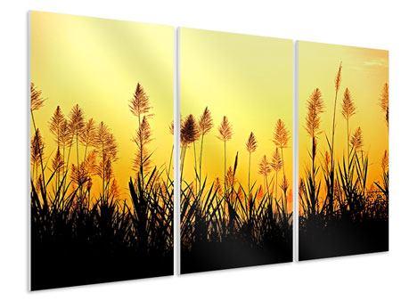 Hartschaumbild 3-teilig Die Blumen des Feldes
