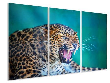 Hartschaumbild 3-teilig Achtung Leopard