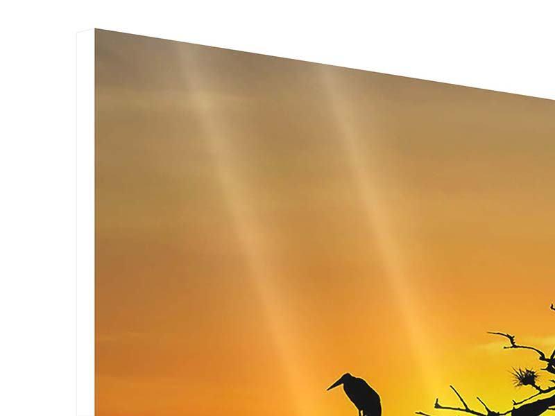 Hartschaumbild 3-teilig Safarietiere bei Sonnenuntergang
