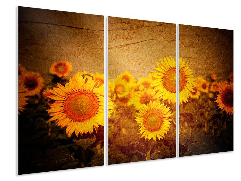 Hartschaumbild 3-teilig Retro-Sonnenblumen