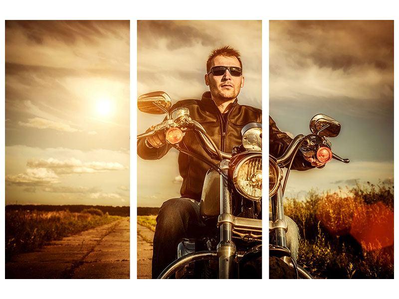 Hartschaumbild 3-teilig Der Coole Biker