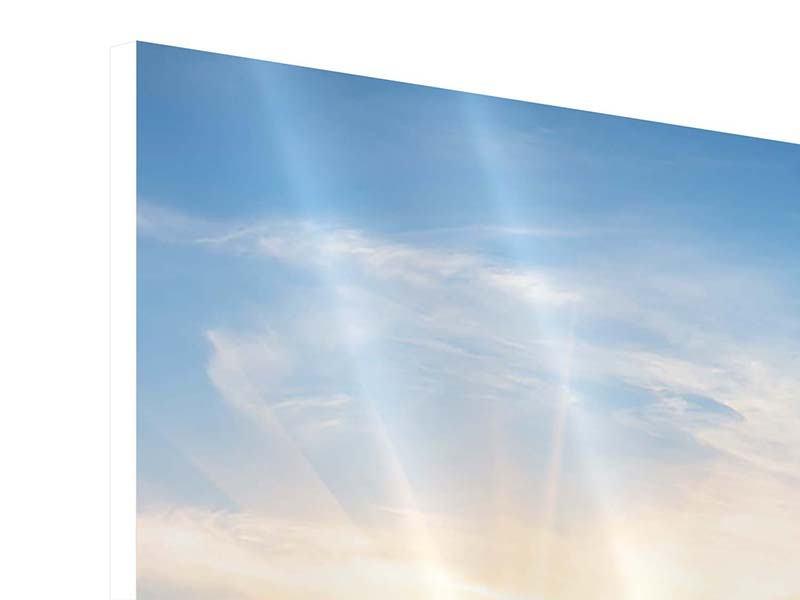 Hartschaumbild 3-teilig Sonnenaufgang im Park