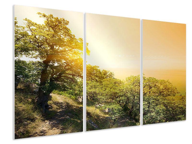 Hartschaumbild 3-teilig Sonnenuntergang in der Natur