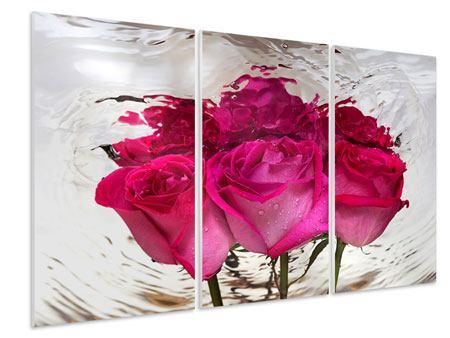 Hartschaumbild 3-teilig Die Rosenspiegelung