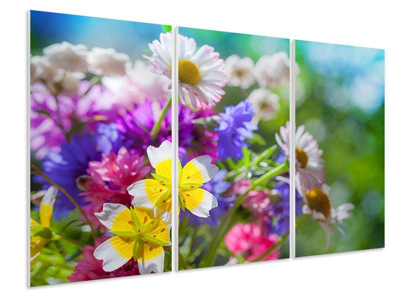 Hartschaumbild 3-teilig XXL Gartenblumen