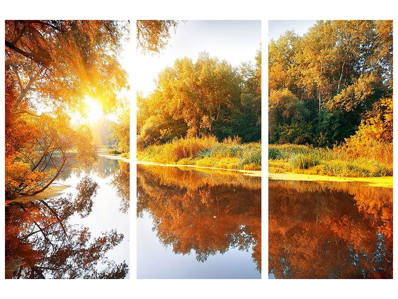 Hartschaumbild 3-teilig Waldspiegelung im Wasser
