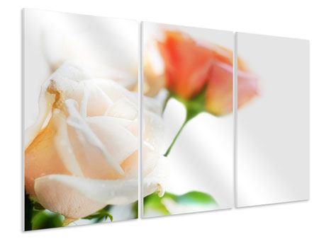 Hartschaumbild 3-teilig Rosenperspektive