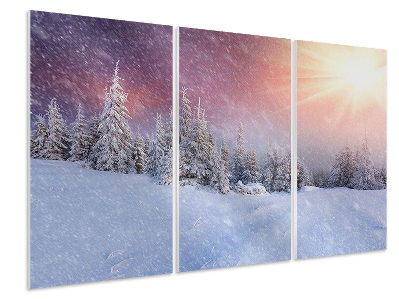 Hartschaumbild 3-teilig Mystischer Schneesturm