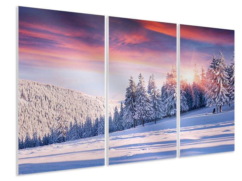 Hartschaumbild 3-teilig Winterlandschaft