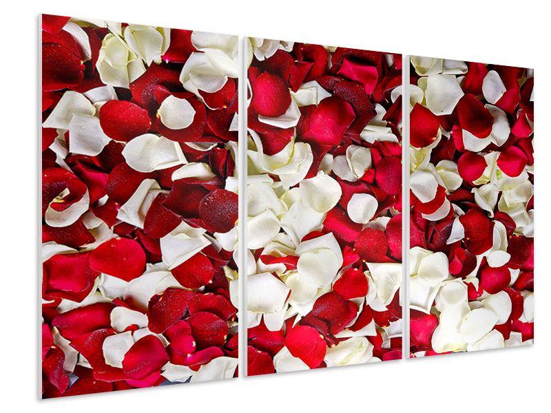Hartschaumbild 3-teilig Rosenblätter