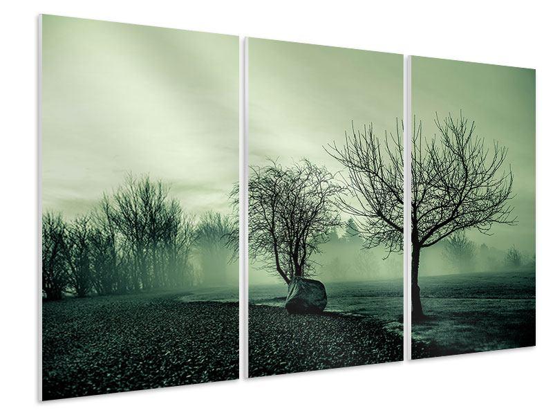 Hartschaumbild 3-teilig Der Auwald im Nebel