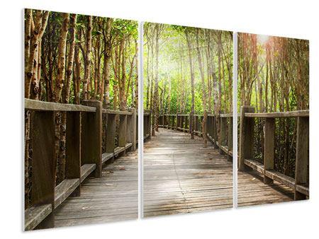 Hartschaumbild 3-teilig Hölzerne Brücke