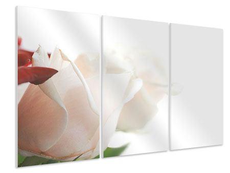 Hartschaumbild 3-teilig Herrliche Rosen