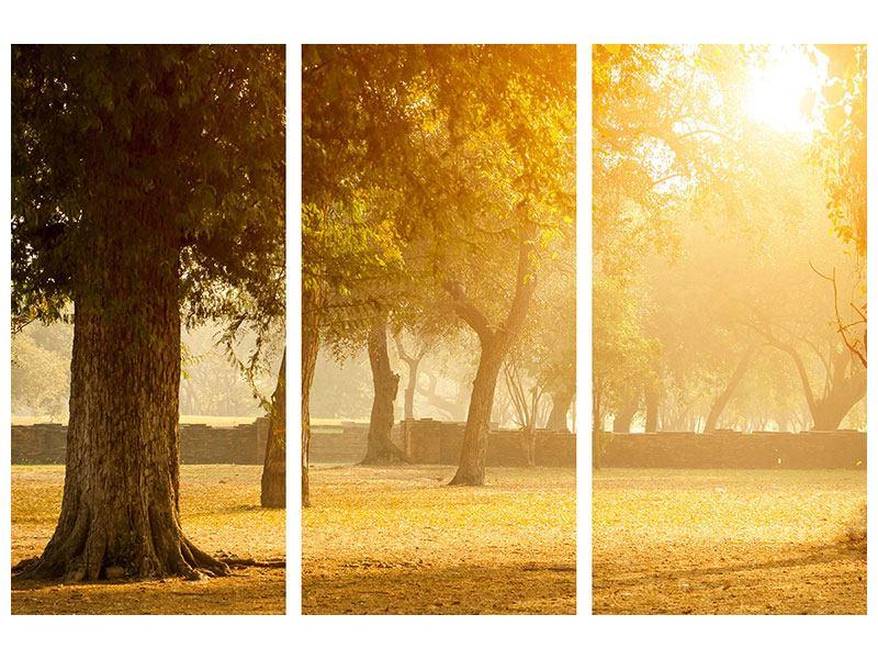 Hartschaumbild 3-teilig Romantik unter Bäumen