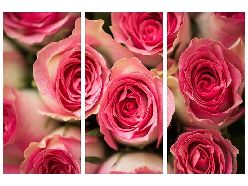 Hartschaumbild 3-teilig Rosenliebe