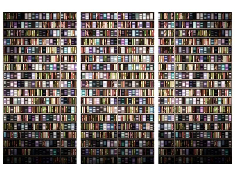 Hartschaumbild 3-teilig Bücherregal