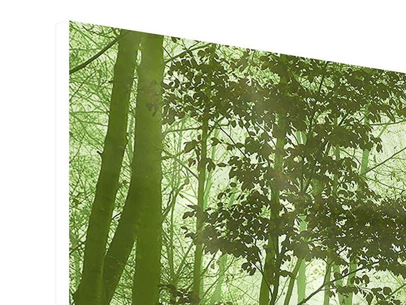 Hartschaumbild 3-teilig Nibelungenwald