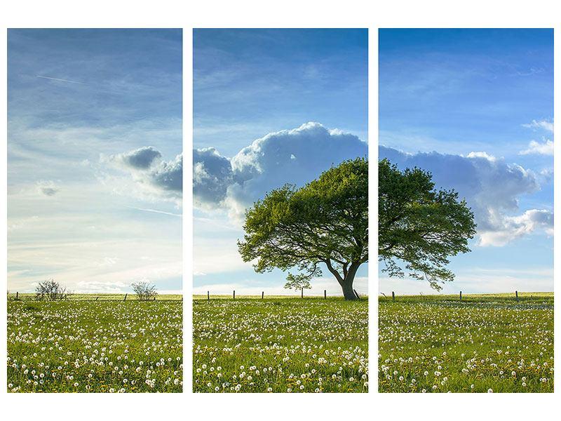 Hartschaumbild 3-teilig Frühlingsbaum