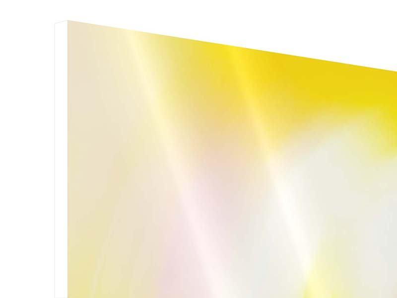 Hartschaumbild 3-teilig Abstrakte Farbkreise