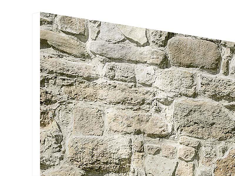 Panorama Hartschaumbild 3-teilig Naturmauer