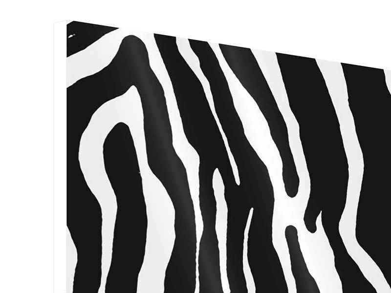 Panorama Hartschaumbild 3-teilig Zebramuster