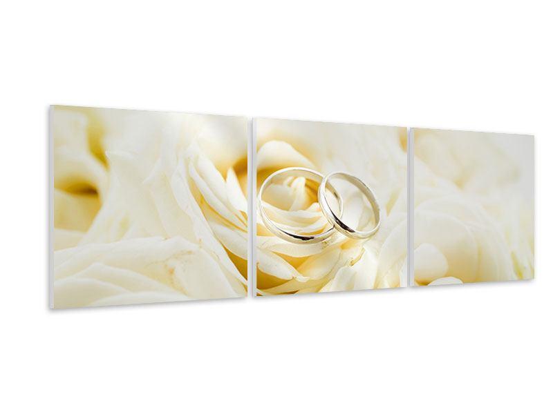 Panorama Hartschaumbild 3-teilig Trauringe auf Rosen gebettet