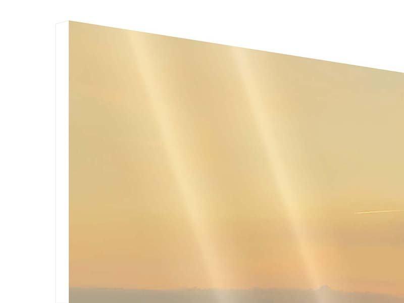 Panorama Hartschaumbild 3-teilig Skyline Köln bei Sonnenuntergang