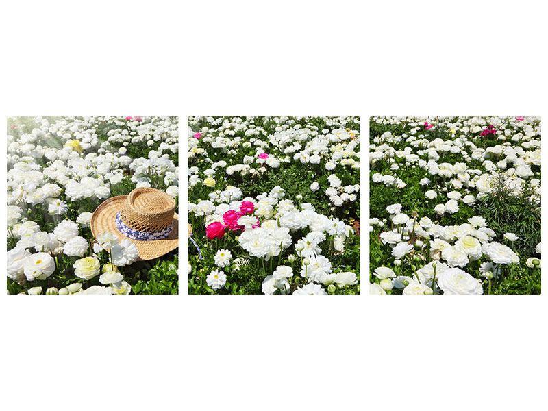 Panorama Hartschaumbild 3-teilig Die Frühlingsblumenwiese