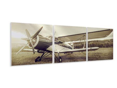 Panorama Hartschaumbild 3-teilig Nostalgisches Flugzeug im Retrostyle