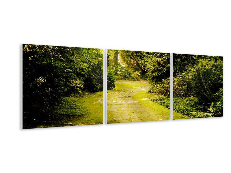 Panorama Hartschaumbild 3-teilig Der bemooste Weg