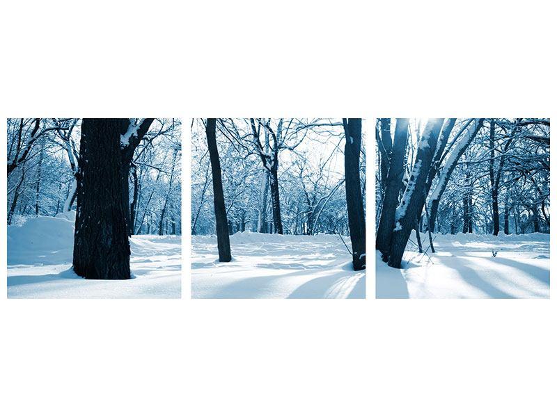 Panorama Hartschaumbild 3-teilig Der Wald ohne Spuren im Schnee