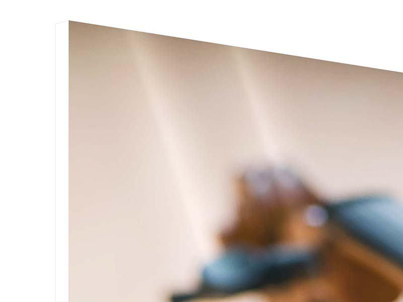 Panorama Hartschaumbild 3-teilig Geige