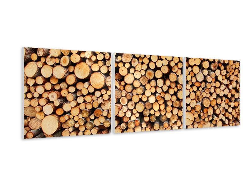 Panorama Hartschaumbild 3-teilig Holzstämme
