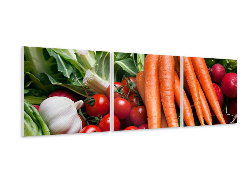 Panorama Hartschaumbild 3-teilig Gemüse