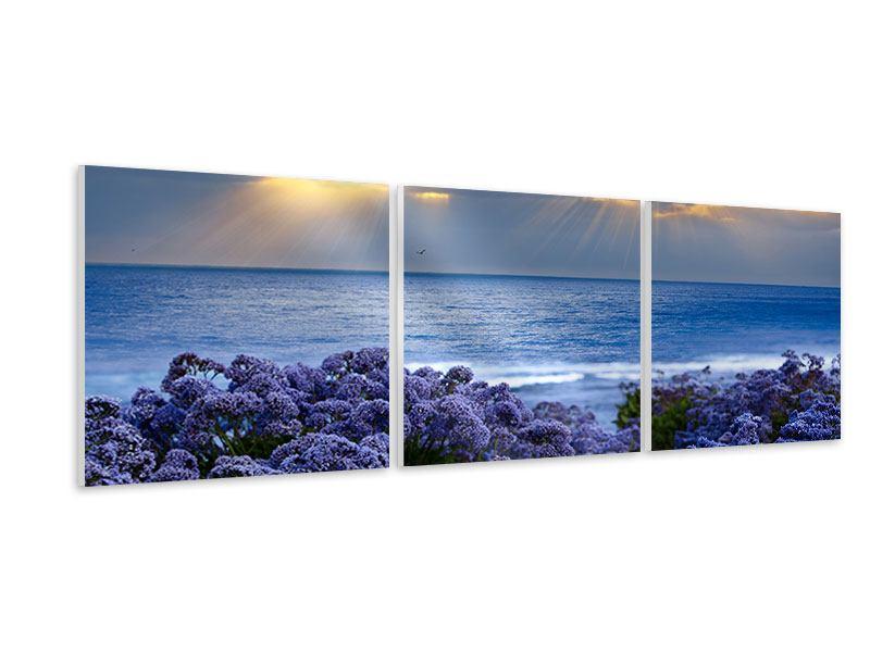 Panorama Hartschaumbild 3-teilig Der Lavendel und das Meer