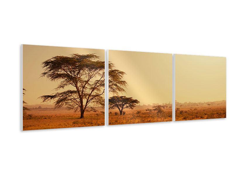 Panorama Hartschaumbild 3-teilig Weideland in Kenia