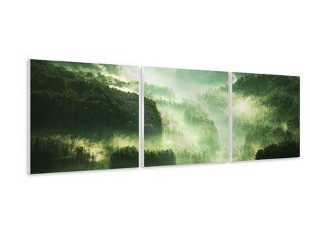 Panorama Hartschaumbild 3-teilig Über den Wäldern