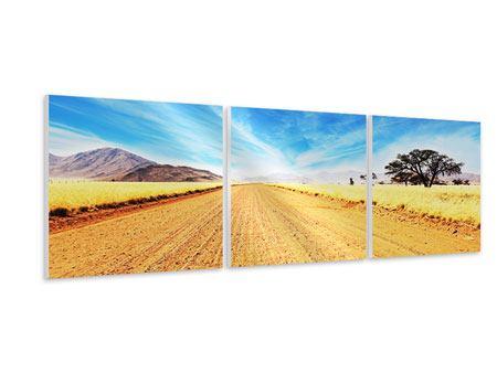 Panorama Hartschaumbild 3-teilig Eine Landschaft in Afrika