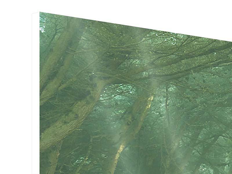 Panorama Hartschaumbild 3-teilig Die Allee