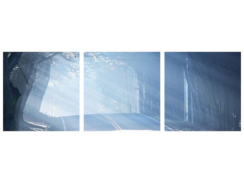Panorama Hartschaumbild 3-teilig Lichtdurchflutete Baumallee