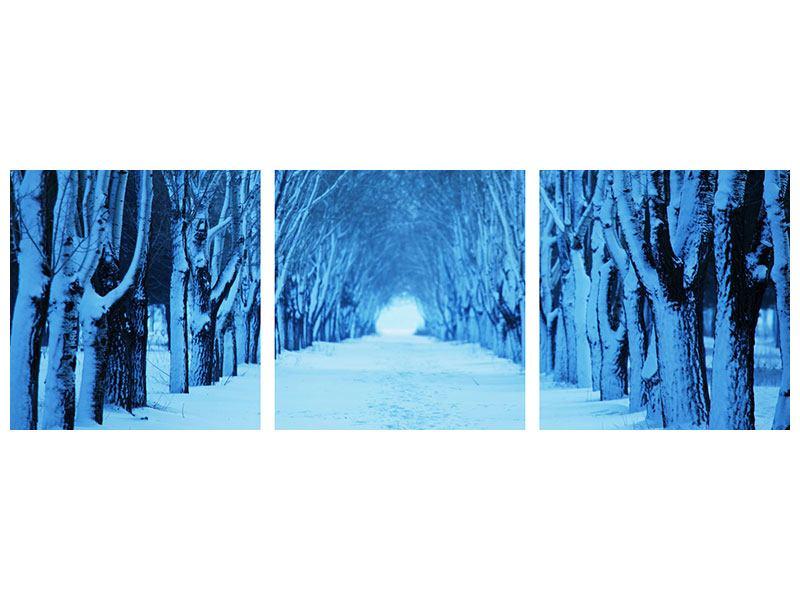 Panorama Hartschaumbild 3-teilig Winterbäume