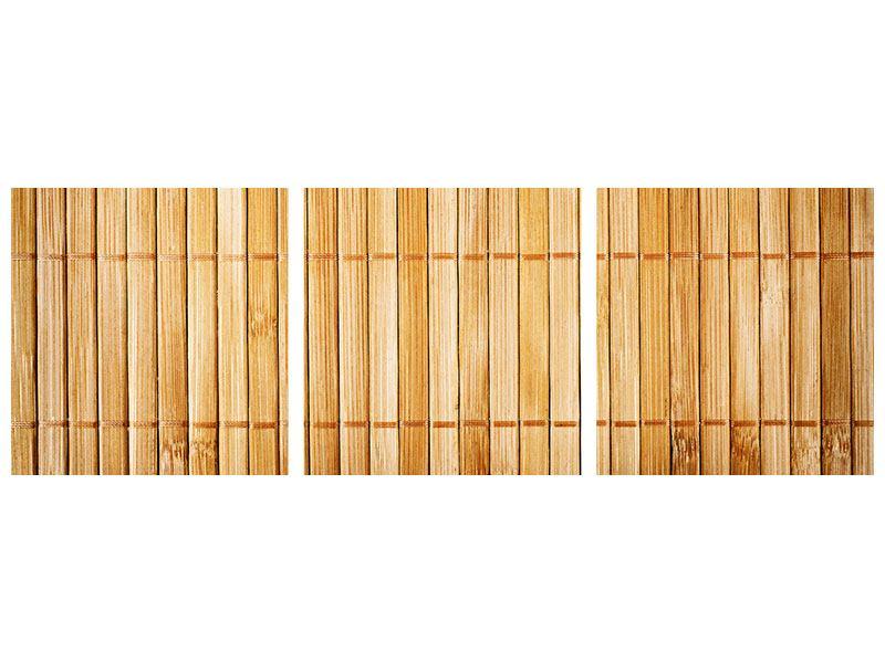 Panorama Hartschaumbild 3-teilig Bambusrohre